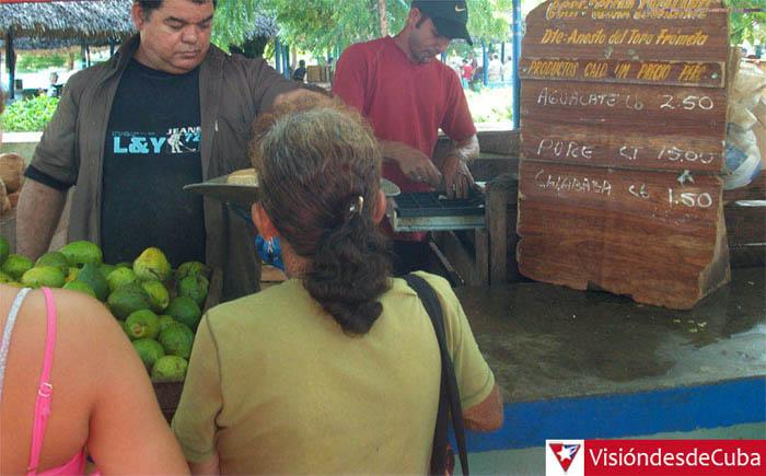 """Visita al Mercado Agropecuario Estatal """"Los Chinos"""" en la ciudad de Holguín. La poca oferta gana protagonismo en las tarimas. VDC FOTO/Luis Ernesto Ruiz Martínez."""