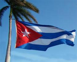 bandera-palma
