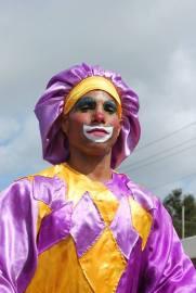 carnaval-infantil-hlg201645