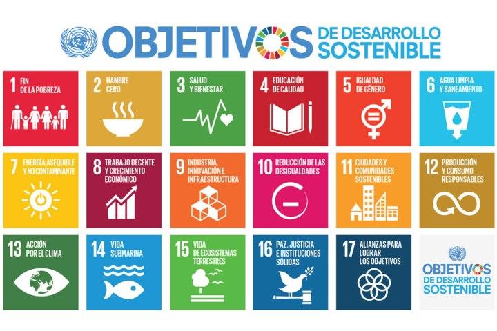 Objetivos para el desarrollo sostenible que se adoptaron en la Cumbre de Naciones Unidas celebrada en el año 2015.
