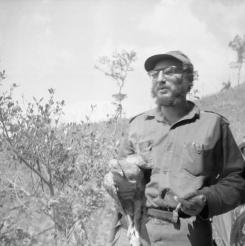 Fidel Castro sostiene un pollo ofrecido por un campesino en la Sierra Maestra.