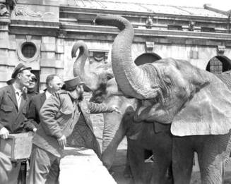 En un Zoológico de Estados Unidos, en abril de 1959.
