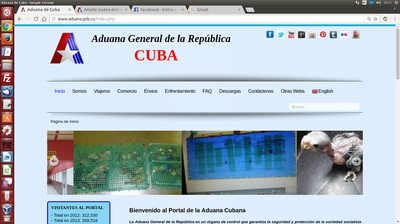 Captura del sitio web de la Aduana.