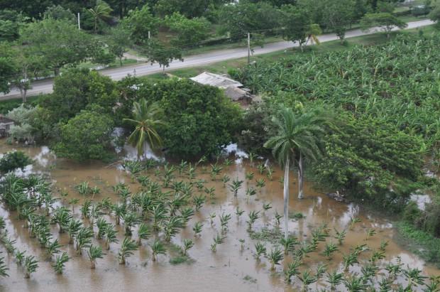 Visiones aéreas del impacto de Irma en Holguín. Foto: Luis Mario Rodríguez.
