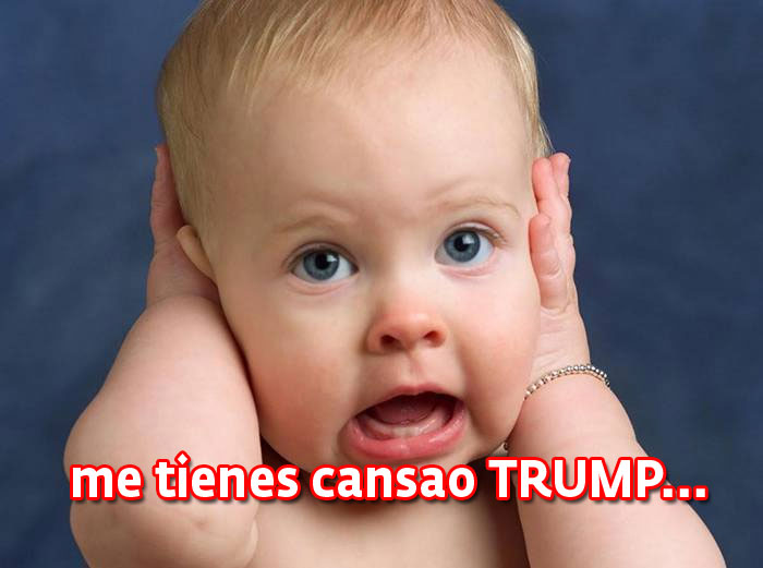 Lo que causan los arrebatos de Donald Trump.