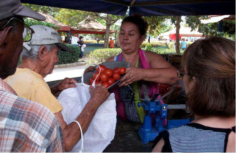 ¿Volveremos a ver la venta de tomates a precios razonables en el Mercado Los Chinos? VDC FOTO/Luis Ernesto Ruiz Martínez.
