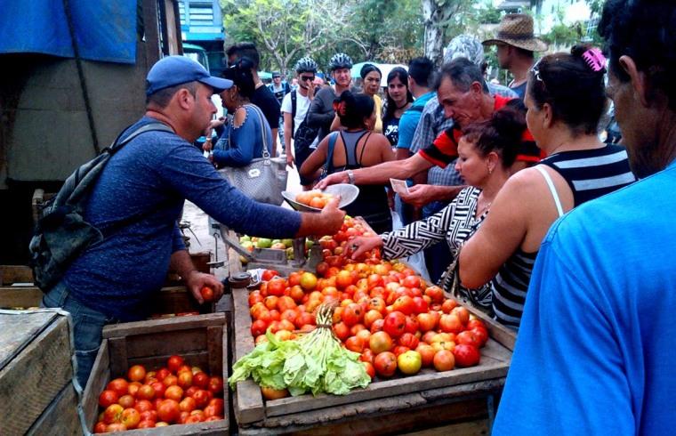 Feria Dominical en el Reparto Lenin de Holguín. Uno de los concurrentes vende la libra de tomates a cinco pesos, como está establecido VDC FOTO/Luis Ernesto Ruiz Martínez.